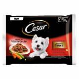 Cesar Selection in Sauce Portionsposer - 24 x 100 g