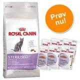 Royal Canin 4 kg Urinary Care tørfoder + 12x85 g Urinary Care Royal Canin vådfoder i sauce Kattemad