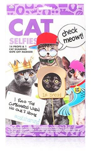 Celebration Nation NP21370 - Kit de selfie para gatos