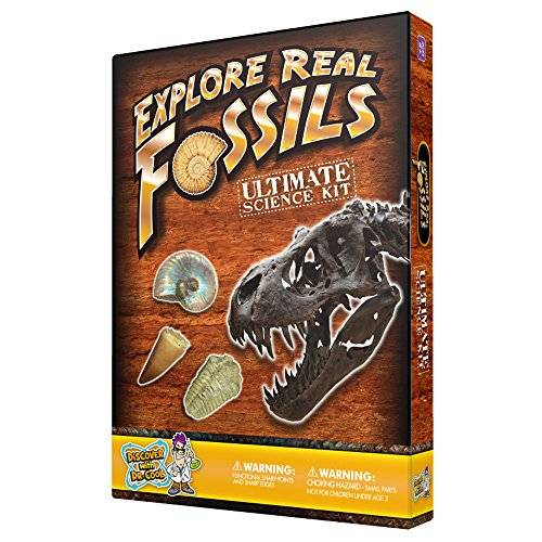 Discover with Dr. Cool Ultimate Fossil Science Kit – 15 Genuine fossils including Dinosaur specimens.