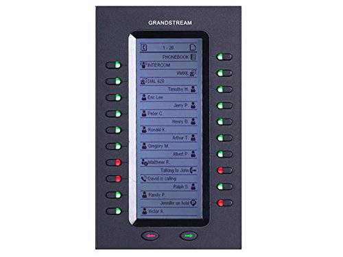 Grandstream Networks GXP2200EXT 20botones Negro IP módulo adicional (add-on) - Teléfono IP (206 x 117 x 32 mm, 380 g)