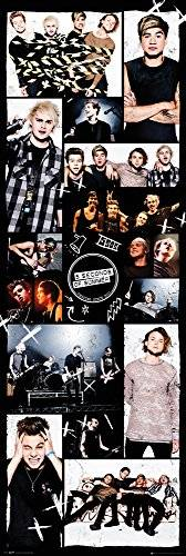 Five seconds of summer GB eye, 5 Seconds of Summer, Grid 2, Poster Puerta, (53x158cm)
