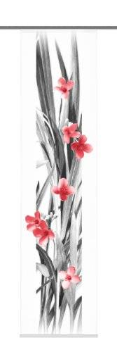 Home fashion 87740 – 707 decorativa Iowa – Panel japonés con impresión digital Panel rieles y sujeciones, 245 x 60 cm), diseño de flores, color rojo