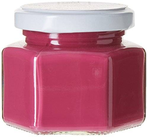 Little Shop of colors ccsjet01 Mythic mate de pintura acrílica (lavable, 100 ml, Rosa, CCSJET11