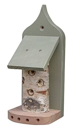 Wildlife World lbt2 Bug Palacio – Natural