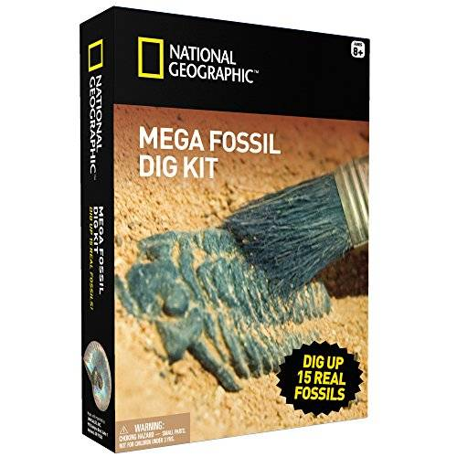 National Geographic Mega Mina–fósiles Dig hasta 15Real Fossils con National Geographic