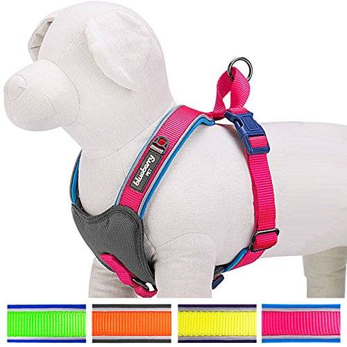 Blueberry Pet Soft & Comfy New Summer Hope 3M reflective Harness Vest, Chest Girth 61cm-75cm, Neck 52cm, M/L, Fluorescent Pink Adjustable Padded Dog Harness, Matching Collar Available Separately