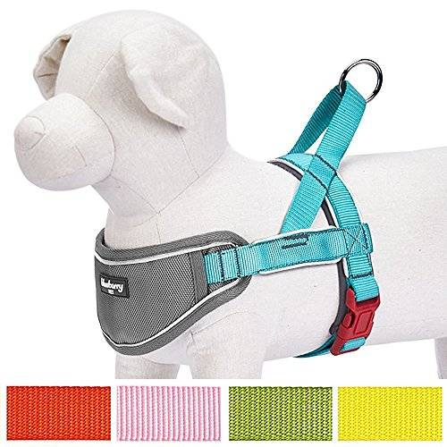 Blueberry Pet Soft & Comfy 3M Reflective Strips Padded Dog Harness Vest, Chest Girth 52cm-66cm, Lake Blue, Medium, Nylon No Pull Adjustable Training Harnesses for Dogs