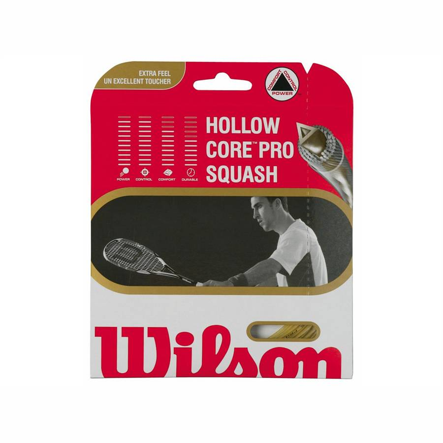 Wilson Hollow Core Pro Squash Set