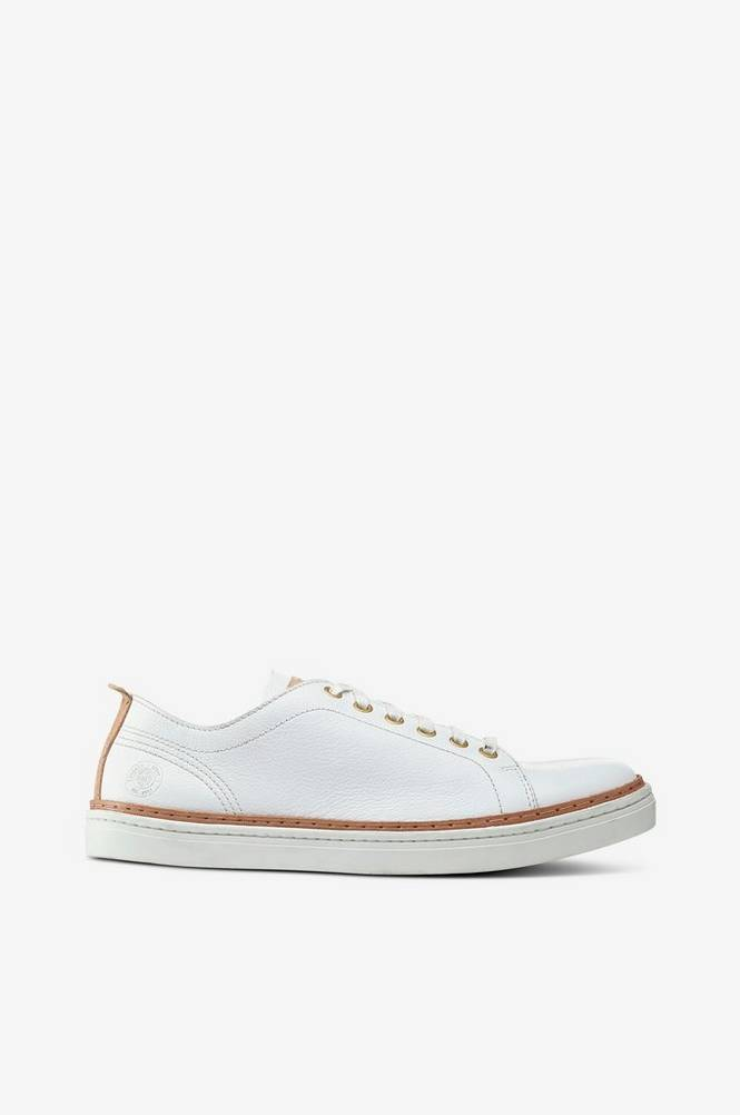 Sneaky Steve Silvermine Leather Low -tennarit