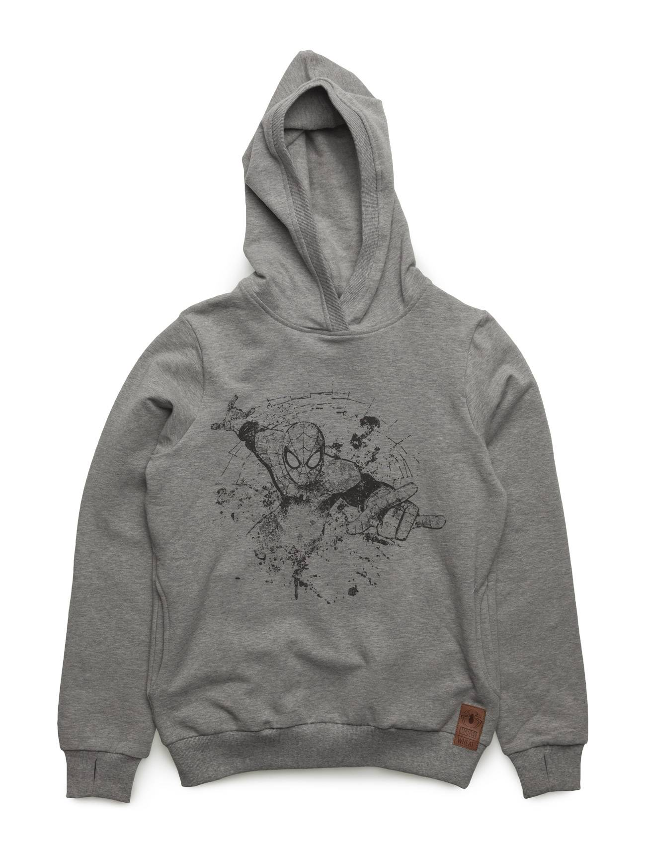 Disney Sweatshirt Spiderman