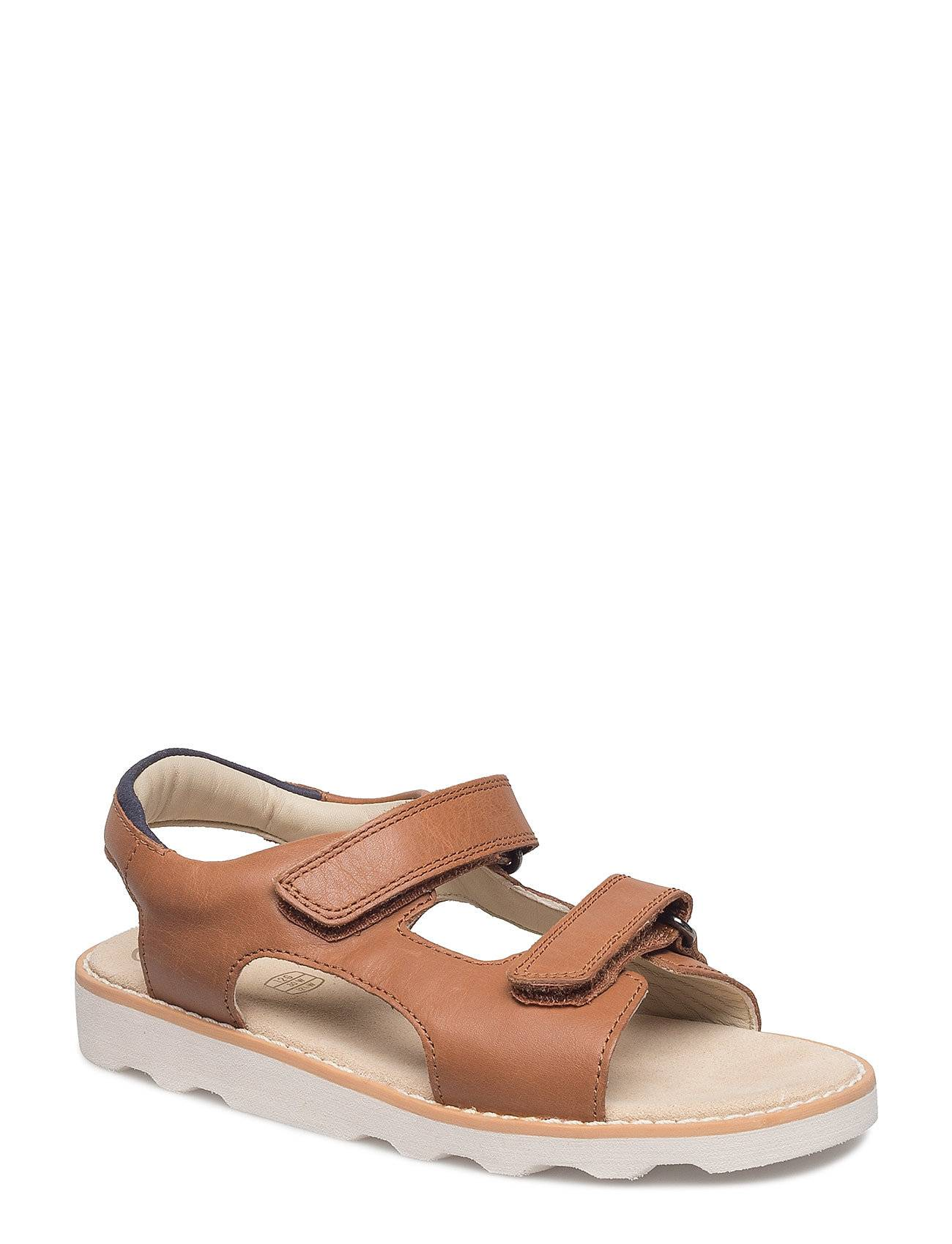 Clarks Crown Root