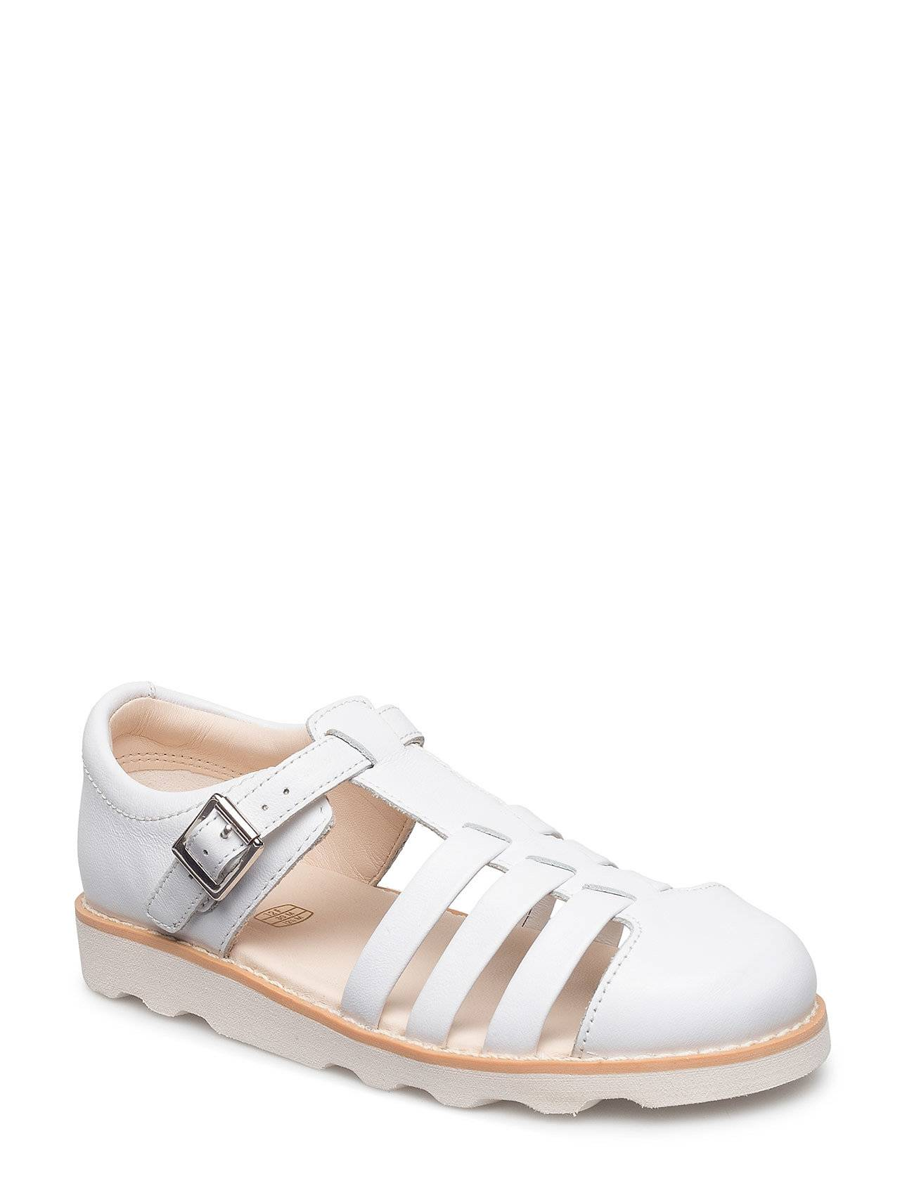 Clarks Crown Stem.