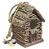 Design Toscano Backwoods Bird House Collection - Cottage