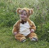 Dress Up Teddy Bear Baby/Toddler Costume, 3-6 Months