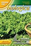 "Franchi Seeds of Italy ""Organic Range Chicory Zuccherina Trieste"" Seeds"