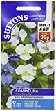 Suttons Seeds 110362 Commelina Starry Starry Sky Seed (30 Pieces)