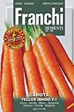 """Franchi Seeds of Italy """"Carrot F1 Tellus"""" Seeds"""