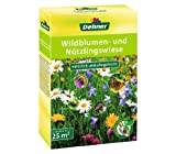 Dehner Wildflower Meadow, 0.5 kg, for approx. 25 m2