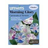 "Westland ""Morning Glory Carnevale Di Venezia"" Seeds"