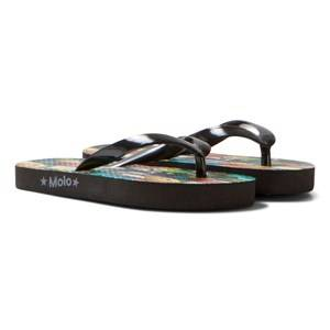 Molo Unisex Sandals Multi Zeppo Flip Flops Surfboards