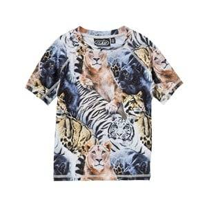 Molo Unisex Swimwear and coverups Multi UV-Top Swim Neptune Top Wild Cats