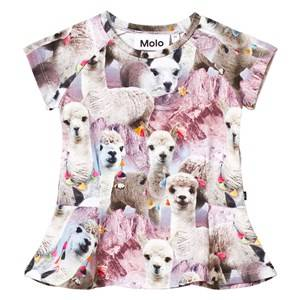 Molo Girls Tops Pink Robbin T-Shirt Lovely Llama