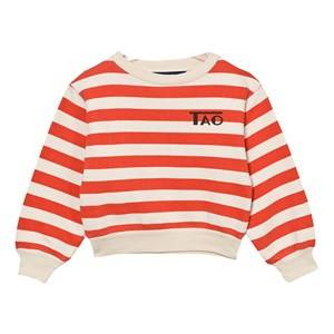 The Animals Observatory Unisex Jumpers and knitwear White Bear Sweatshirt Raw White Stripes