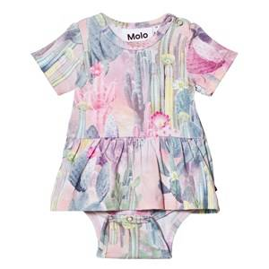 Molo Girls All in ones Multi Frannie Baby Body Delicate Cacti