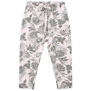Kiss How To Kiss A Frog Girls Bottoms Beige Todo Pants Powderpalm