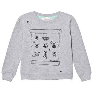 eBBe Kids Boys Jumpers and knitwear Grey Sacke College Sweater Grey Melange