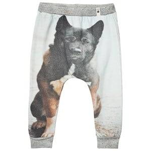 Popupshop Unisex Bottoms Multi Baggy Leggings Dog
