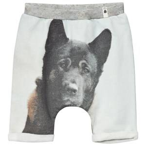 Popupshop Unisex Shorts Multi Baggy Shorts Dog