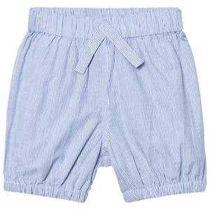 Kiss How To Kiss A Frog Unisex Shorts Blue Ruby Shorts Sky