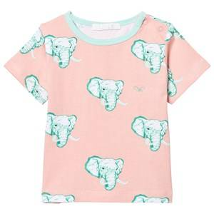 Livly Girls Tops White T-Shirt Coral Elephants