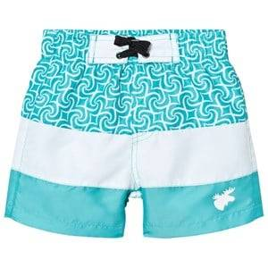Lindberg Unisex Swimwear and coverups Blue Barbados Beach Shorts Turquoise