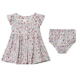 Ralph Lauren Girls Dresses Multi Floral Print Dress Bloomer