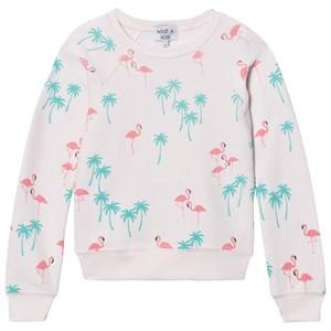 Wildfox Girls Jumpers and knitwear Pink Pink All Over Flamingo Print Sweater