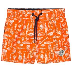 Oneill Boys Swimwear and coverups Red Red Thirst For Surf Swim Shorts