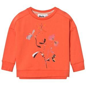 Molo Girls Jumpers and knitwear Beige Mandy Sweatshirt Living Cora