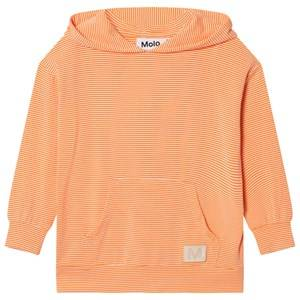 Molo Girls Tops Pink Rasha Hoodie Fiery Coral Mini Stripe