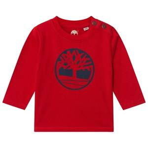 Timberland Boys Tops Red Red Tree Logo Tee