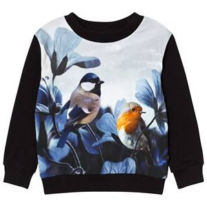 Molo Girls Tops White Regine Sweatshirt Birds of Poetry