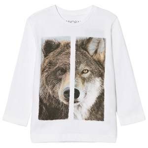 Mayoral Boys Tops White White Wolf/Bear Print Tee