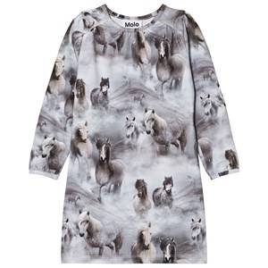 Molo Girls Dresses Grey Ceria Dress Pony