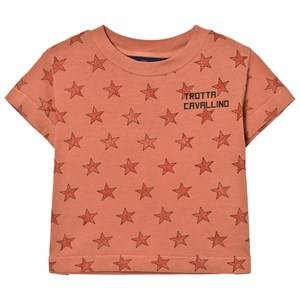 The Animals Observatory Unisex Tops Orange Rooster T-Shirt Deep Orange Stars