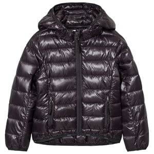 Molo Girls Coats and jackets Purple Herb Jacket Nine Iron