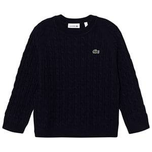 Lacoste Boys Jumpers and knitwear Navy Navy Cable Knit Jumper