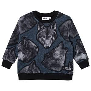 Molo Boys Jumpers and knitwear Grey Morell Sweatshirt Twilight Wolf