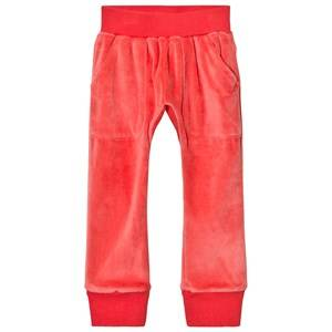 Gardner and the gang Unisex Bottoms Orange Slouchy Pants Orange